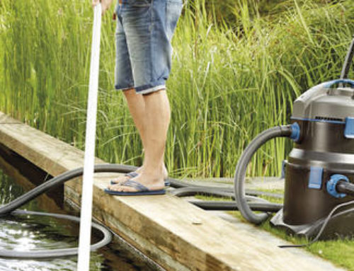 The importance of regular pond cleaning and maintenance