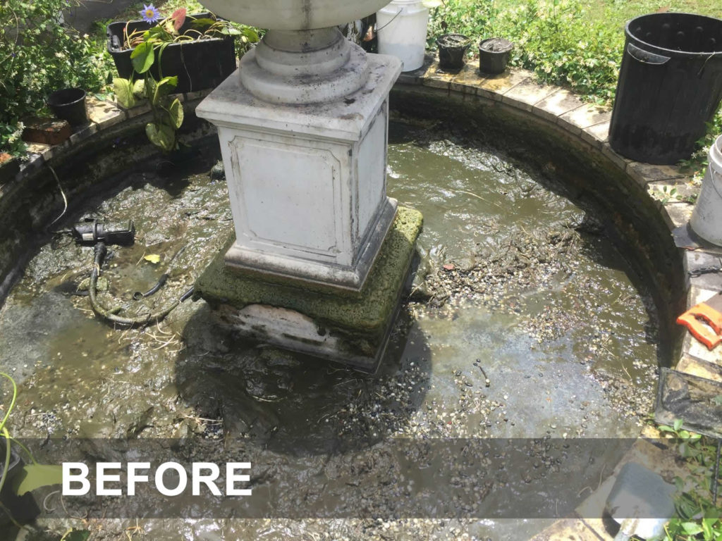 fountain cleaning